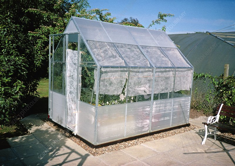 Polycarbonate greenhouse in a garden - Stock Image - C003