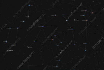 Draco, Constellation, Labeled - Stock Image - C033/4938