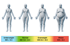 20 female bmi Normal Weight