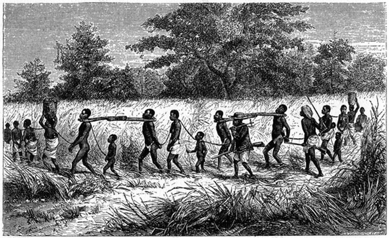 Image result for slave caravans from african interior
