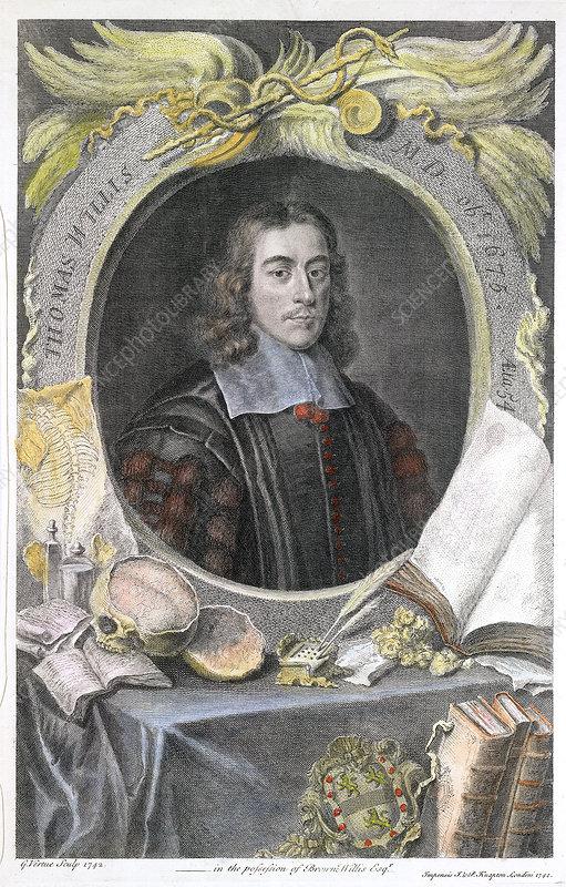 Thomas willis diabetes