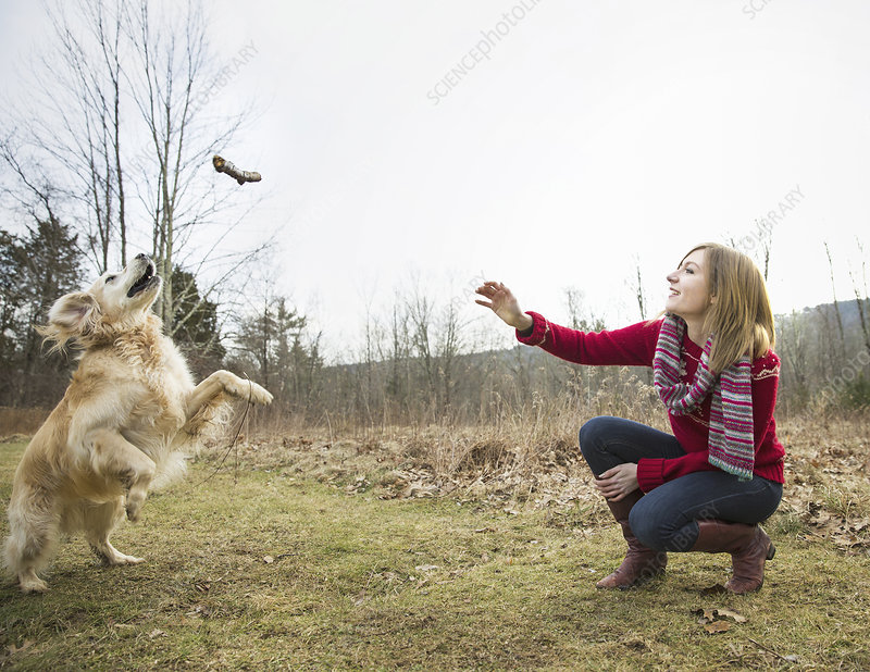 Woman with a golden retriever dog. - Stock Image - F008/9855 ...