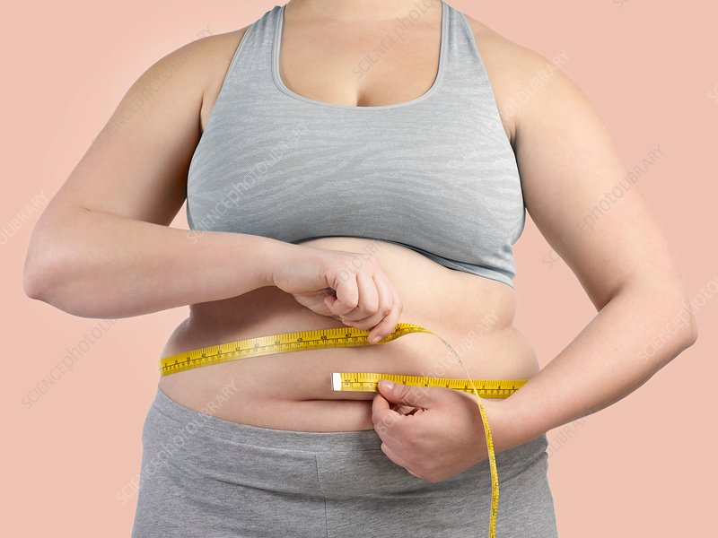 Overweight Woman Measuring Waist Stock Image F021 2254 Science Photo Library