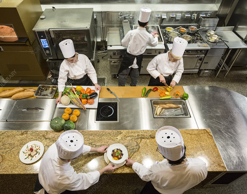 Brigade Or Crew Of Chefs Working In A Commercial Kitchen Stock Image F023 0664 Science Photo Library