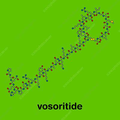 Vosoritide achondroplasia drug molecule, illustration - Stock Image -  F030/0526 - Science Photo Library