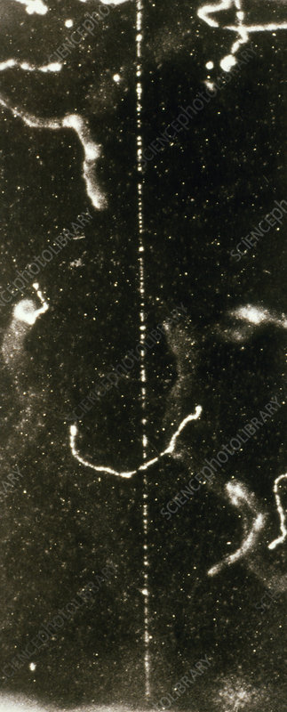 Track of fast beta ray in a cloud chamber