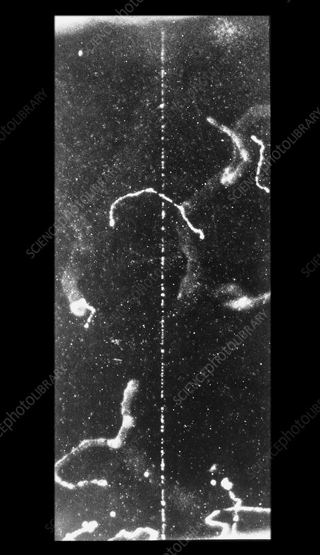 Track of fast beta ray in cloud chamber