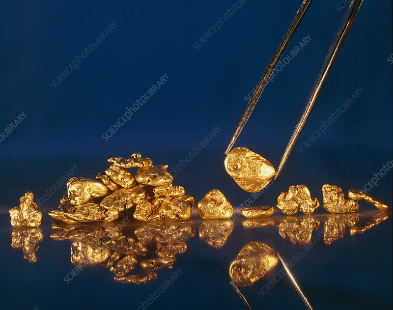 Gold nugget held in twizzers