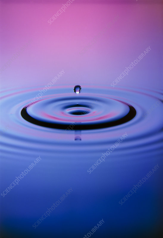 Droplet impacting on water