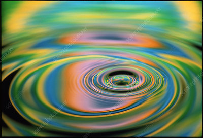 Multiple ripples from a water drop