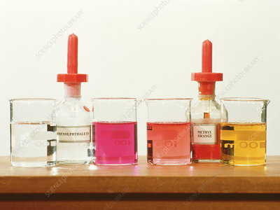how are alkalis and bases related to dating