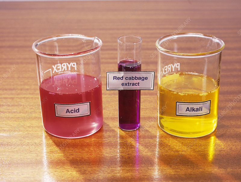 testing for acidity and alkalinity chem Understand the relationship between ph and total alkalinity the ph of the water is essentially a measure of the level of acidity in the water total alkalinity is a measure of the water's ability to buffer and resist changes to the ph more precisely, ph is a measure of the concentration of.