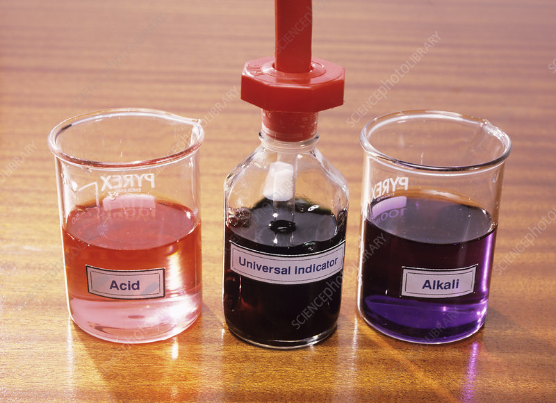 Universal indicator - Stock Image - A500/0525 - Science