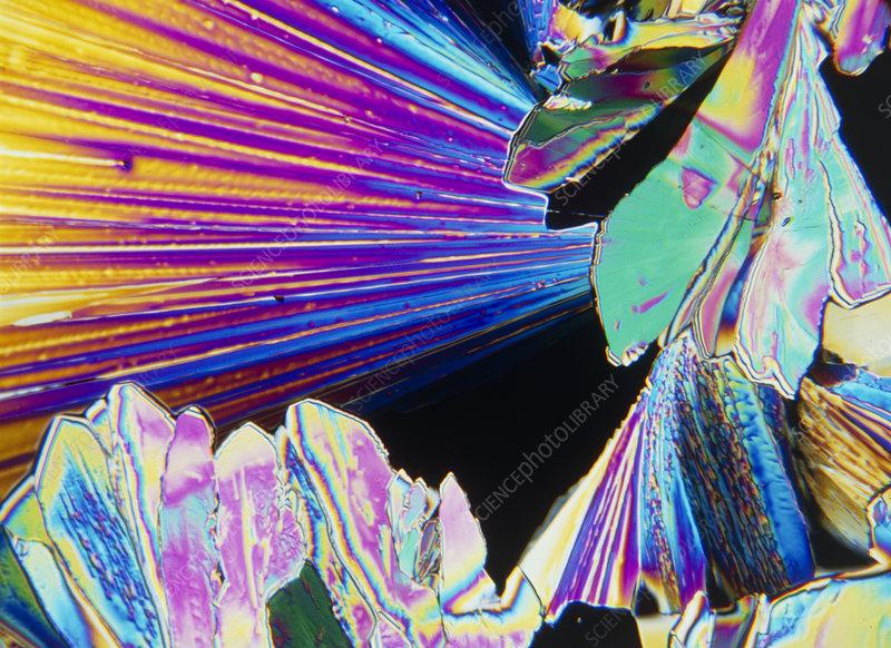 Crystals of tartaric acid