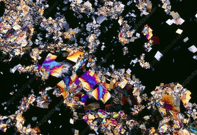 PLM of crystals of cholesterol