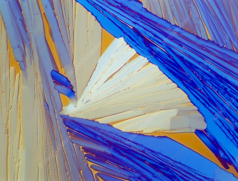 Polarised LM of acenaphthene crystals