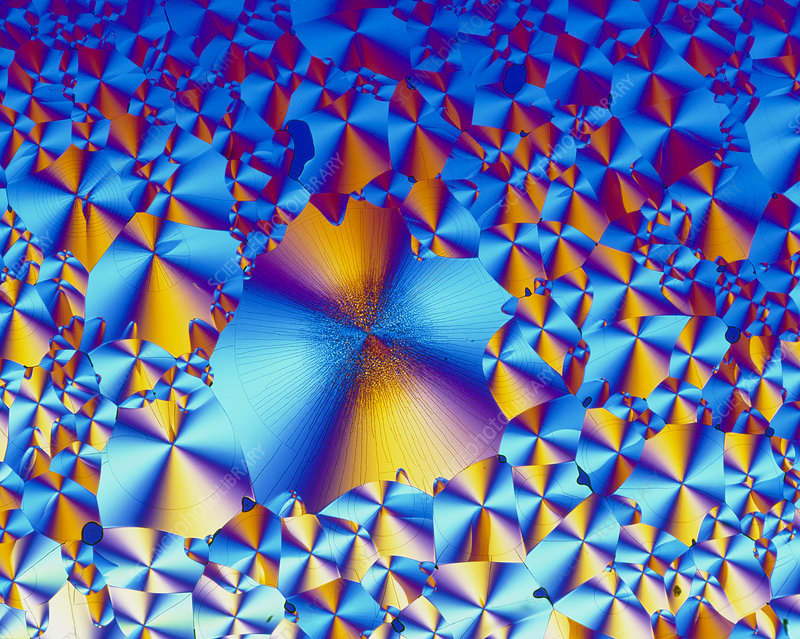 PLM of crystals of tryptophan