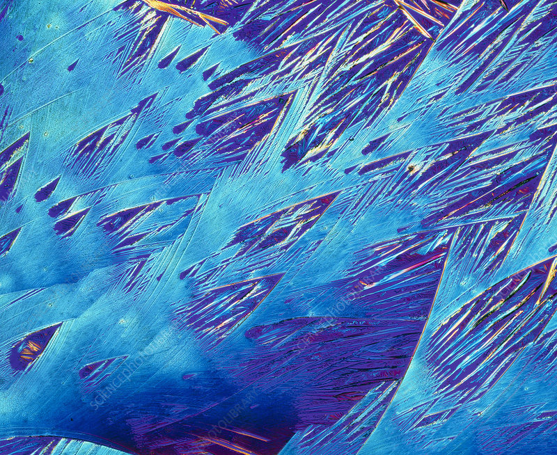 Crystals of beta-endorphin