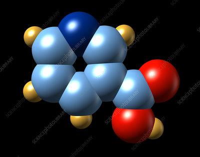 Vitamin B3, molecular model