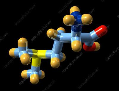 Vitamin U, molecular model