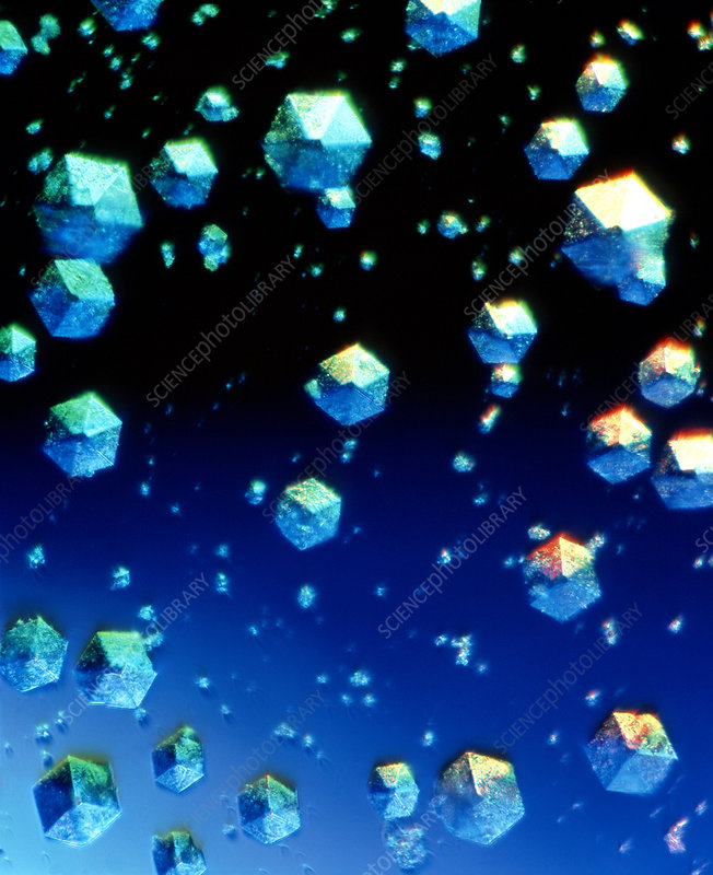 Insulin crystals