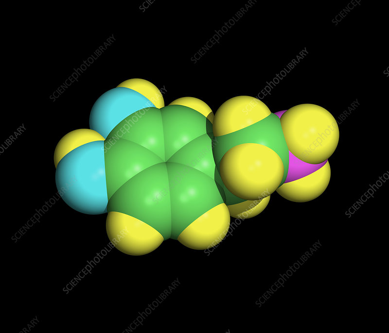 Computer artwork of a dopamine molecule