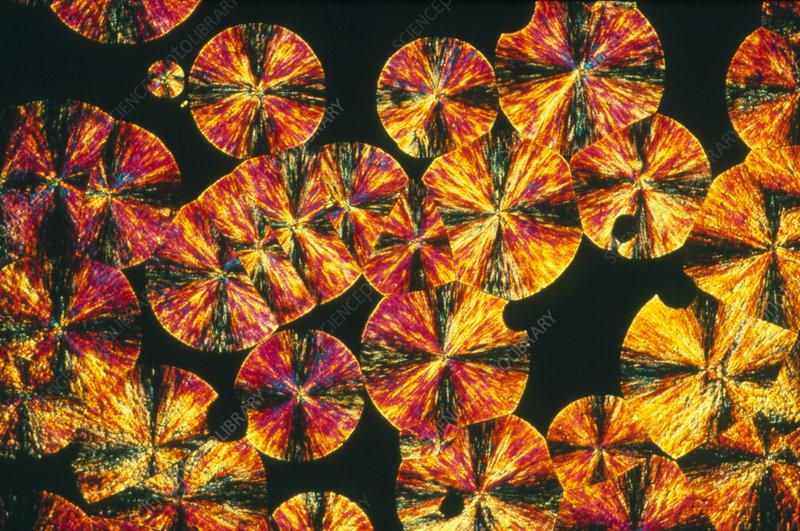Osmosin drug crystal