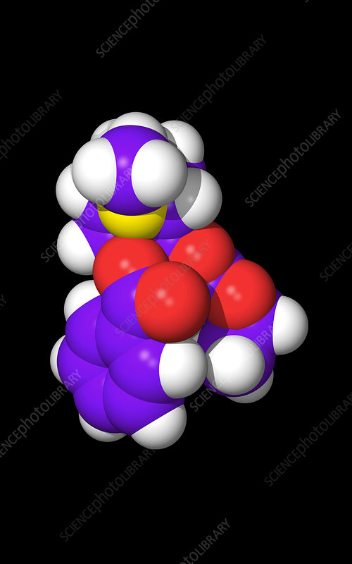 Computer graphic of a molecule of cocaine