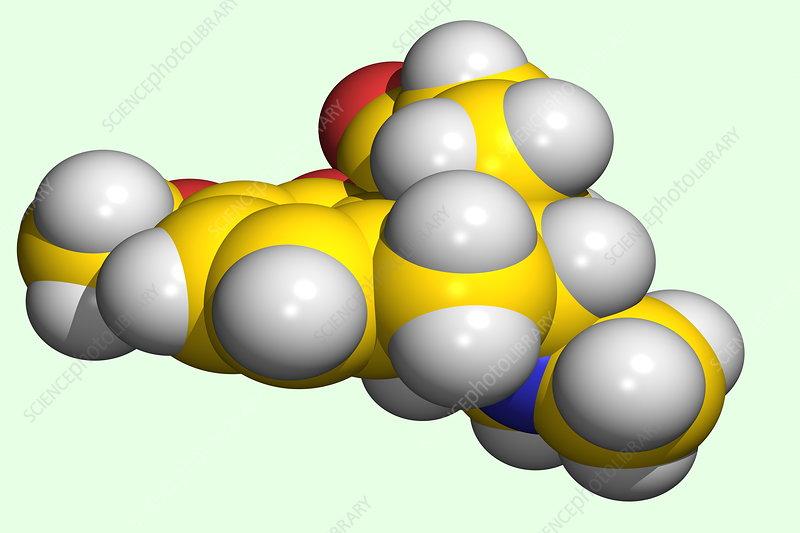hydrocodone apap 5mg 325mg. makeup 750. hydrocodone apap