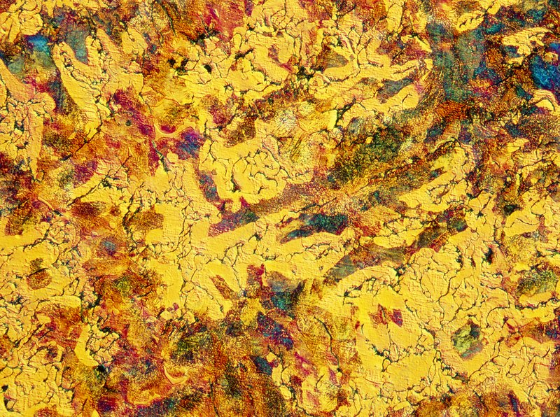 LM of thin section of cast iron