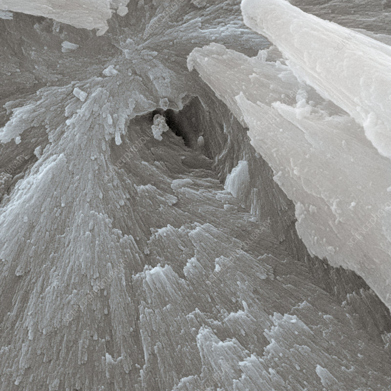 Fractured fluorapatite crystal, SEM