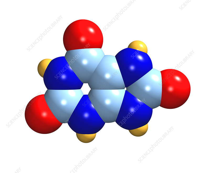 Uric acid moleculeUric Acid Molecule