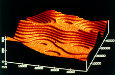 Contour map of polymer coating on silicon
