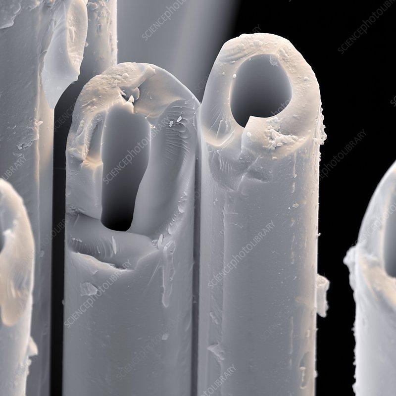 Glass fibres, SEM