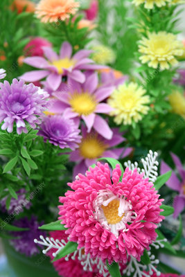 Chrysanthemum and mixed flowers