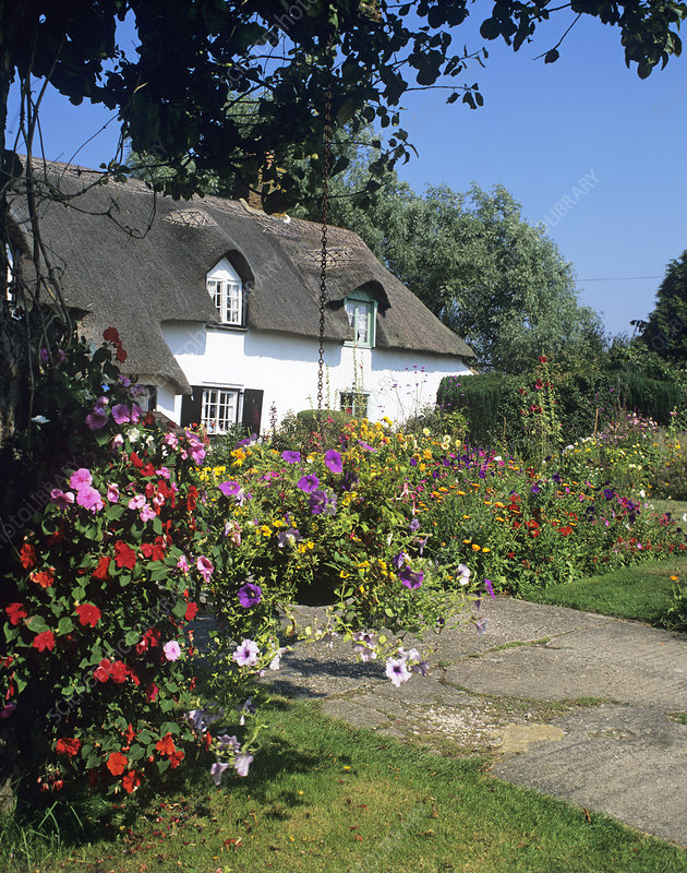 Flowers outside a cottage
