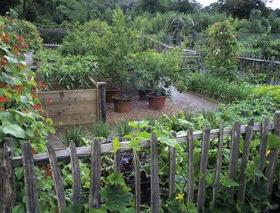 Vegetables garden ideas stylish designssamples photos for Stylish vegetable garden