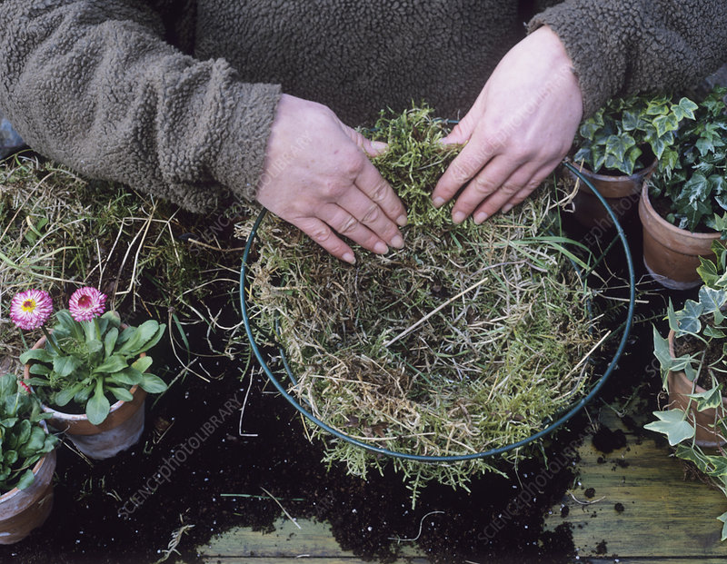 Creating a hanging basket