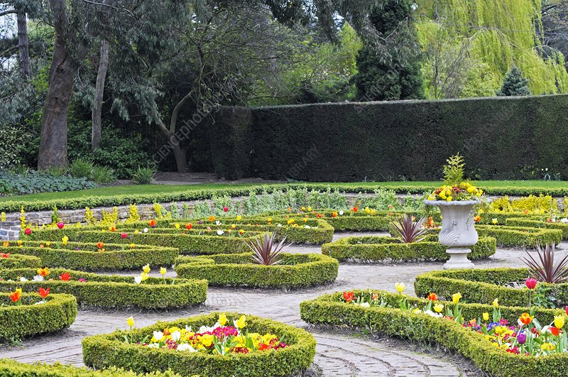 Ornamental garden in spring
