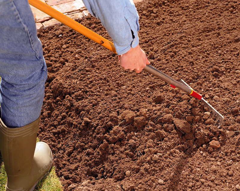 Preparing soil stock image b861 0080 science photo library for Soil library