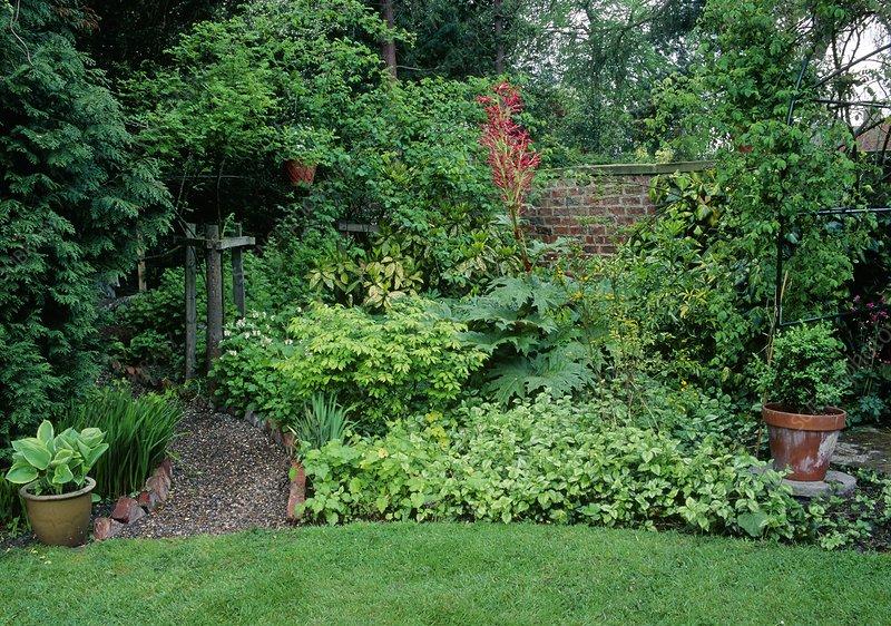 Garden Scene.