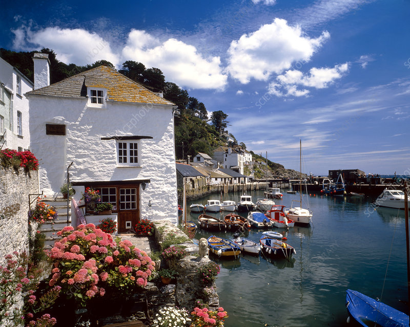 Cottages by a harbour