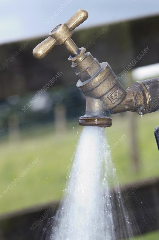 Outdoor Water tap