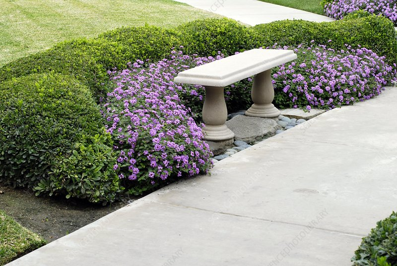 Stone seat by a garden path