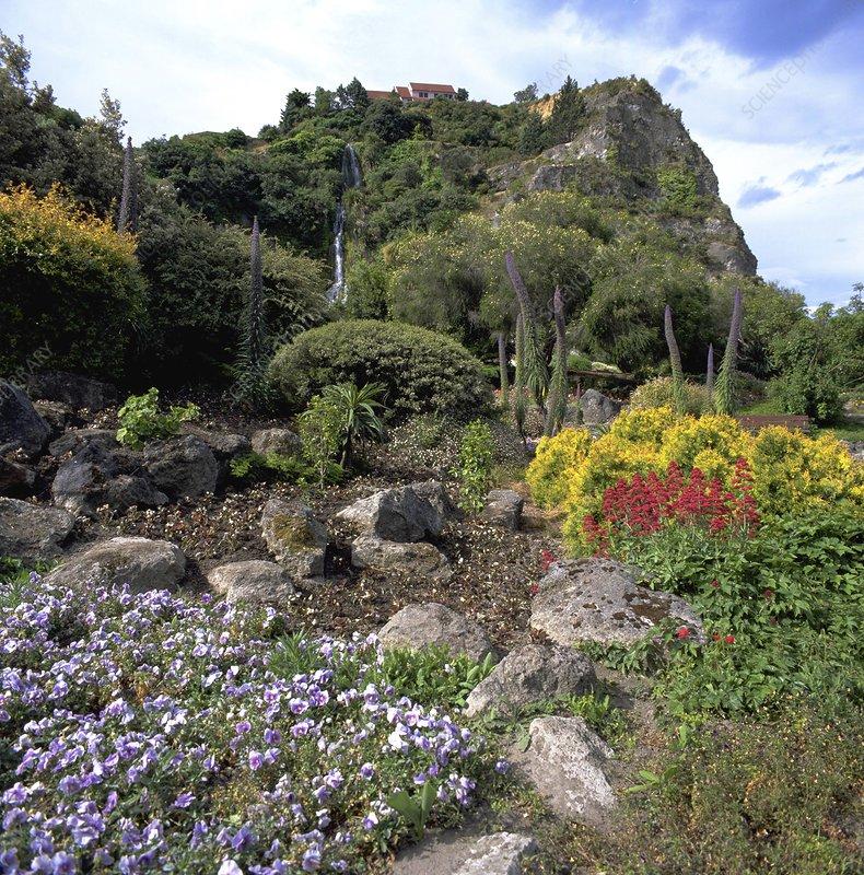 Napier Centennial Gardens