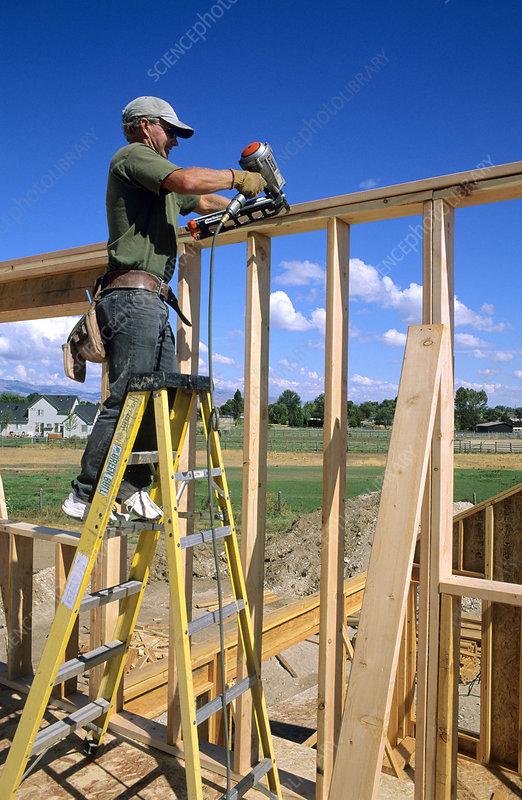 Carpenter Building a Wall