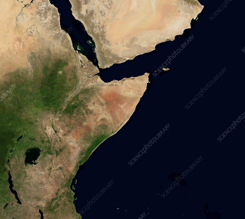 East Africa and Middle East