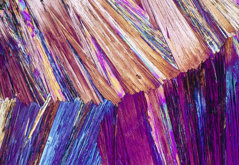 Ephedrine drug crystals, light micrograph