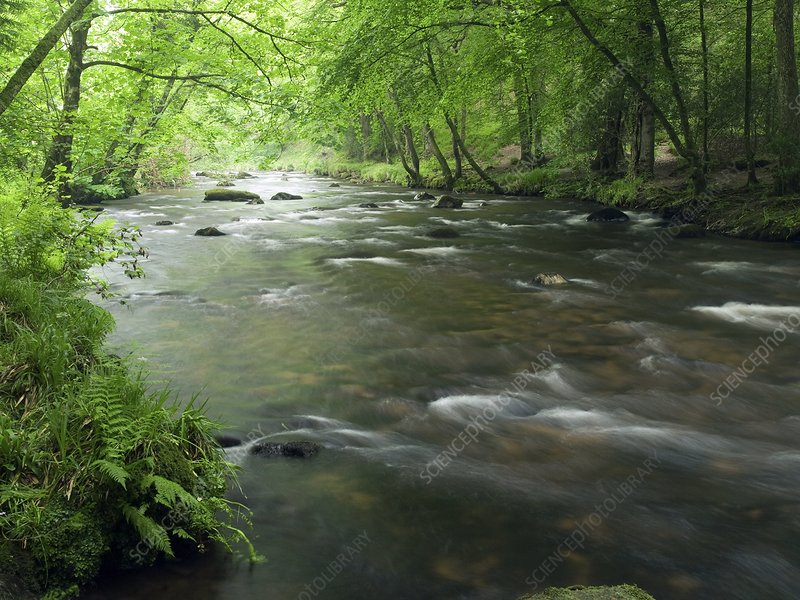 River Teign, Dartmoor, UK