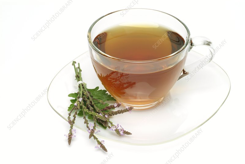 Vervain herbal tea
